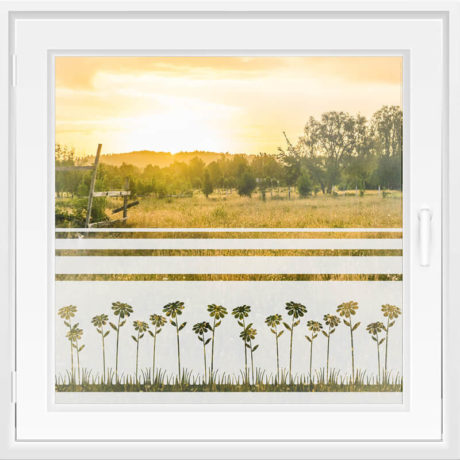 Fensterfolie WiT 104 – Margeriten Blumenwiese