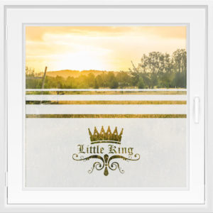 Fensterfolie WiT 134 - Little King