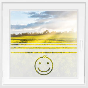 Fensterfolie WiT 148 - Smiley